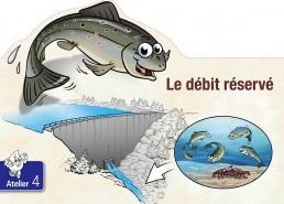 Dominique SENON - illustration pédagogique