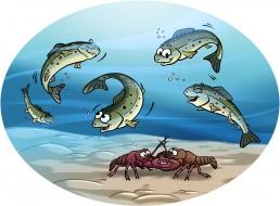 Dominique SENON - illustration rivière truites