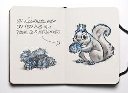 Dominique SENON -Mascotte écureuil noir